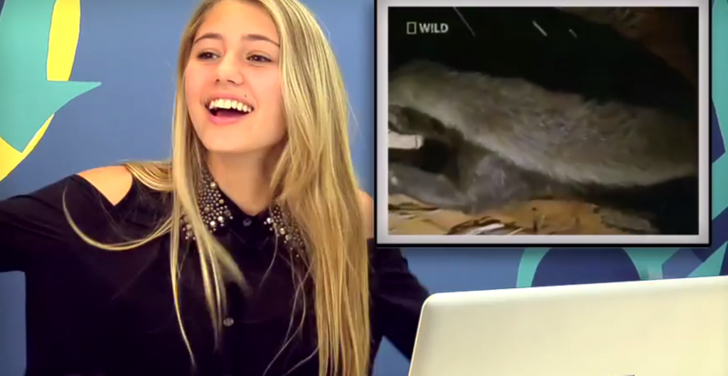Teens React to Honey Badger